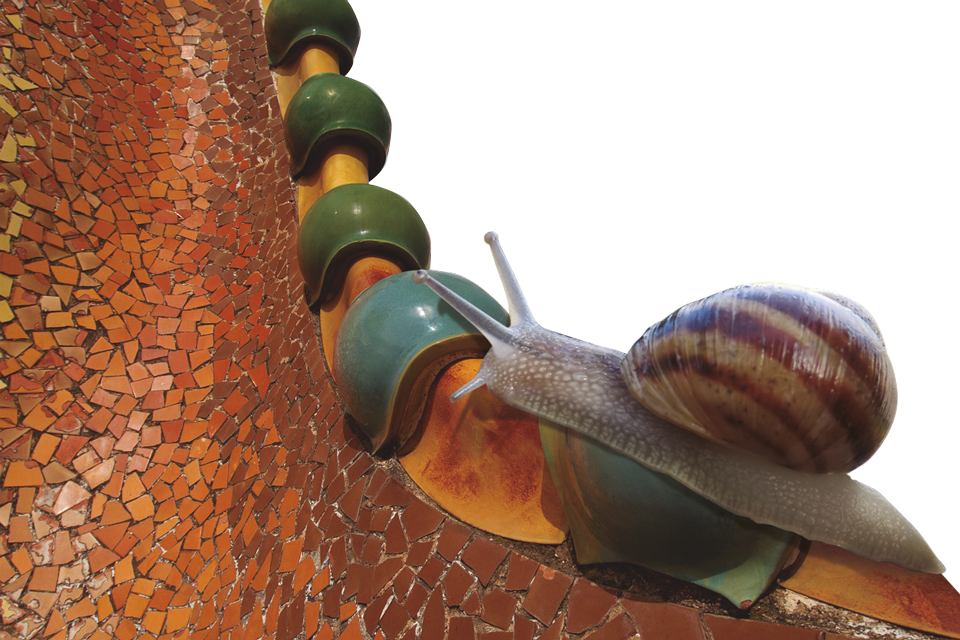 Caragol al teulat de la casa Batlló